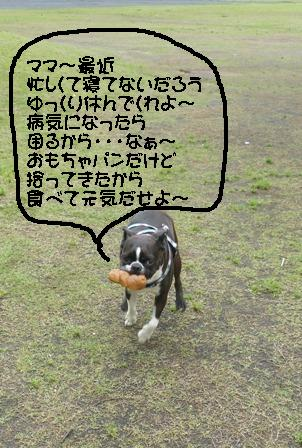 Fujimi_035